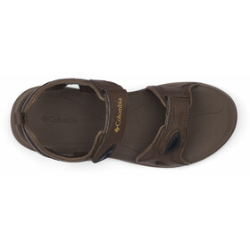 Columbia 2 Strap Sandals Men cordovan
